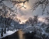 """Photograph by Charles Hoopes: Snow-covered trees """"Over the Brandywine."""""""